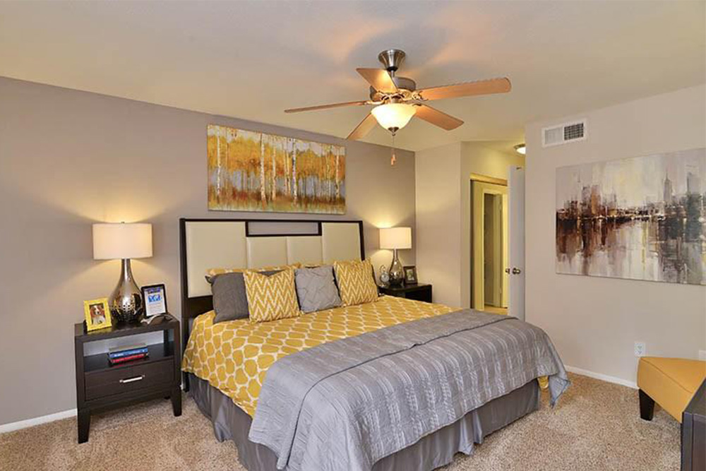 One Bedroom Apartment For Rent In Houston TX